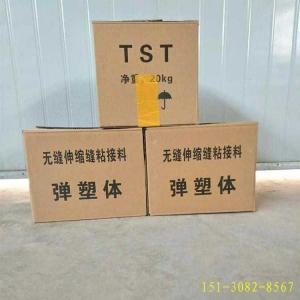 TST/GTF桥梁伸缩接缝【弹塑体】