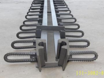 C40、60、80型单组式型钢桥梁伸缩缝衡水生产基地